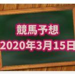サラリーマンの複勝競馬予想【20年3月15日】厳選2レース!!
