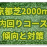 京都芝2000m内回りは内枠逃げ先行勢が圧倒的有利!!馬券の買い方は?