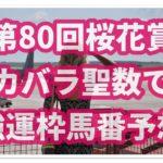 【第80回】桜花賞予想過去4年の結果からある法則性があった!?