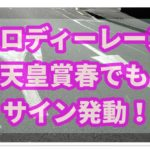 2020年天皇賞春でメロディーレーンのサインが発動!次走はどのレース?