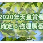 2020年第161回天皇賞(春)をカバラ聖数と施行回数で予想!