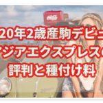 2020年アジアエクスプレス産駒デビュー!評判と種付け料は?