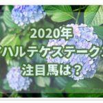 アハルテケステークス【2020】を過去データから有力馬を予想!