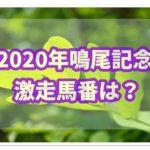 2020年第73回鳴尾記念は前年馬番から激走馬を予想!!