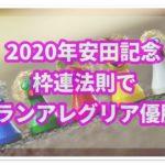 2020年安田記念でグランアレグリアが買った理由を解説!その秘密は枠連?