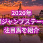 新潟ジャンプステークス【2020年】の過去データから注目馬を紹介!