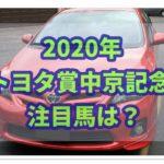 トヨタ賞中京記念【2020年】の過去データから注目馬を紹介!!