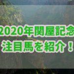 関屋記念【2020年】の過去データから注目馬を紹介!!