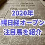 札幌日経オープン【2020年】の過去データから注目馬を紹介!!