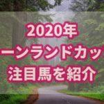 キーンランドカップ【2020年】過去データから注目馬を紹介!!