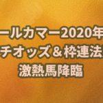 オールカマー【2020年】回顧!!オッズと枠連法則から馬券的中⁉