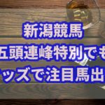 競馬五頭連峰特別の朝イチオッズでも必勝パターンが炸裂!!