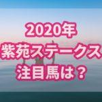 紫苑ステークス【2020】の過去データから注目馬を紹介!!