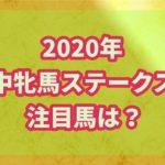 アイルランド府中牝馬ステークス【2020年】の過去データから注目馬を紹介!!