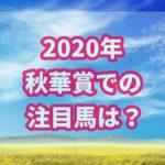 秋華賞【2020年】で勝つ!!過去データから優勝できる馬は?