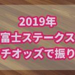 富士ステークス【2019年】を振り返る!オッズから狙えた馬とは?