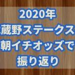 武蔵野ステークス【2020年】振り返り!!激走した穴馬はオッズから読み取れた?