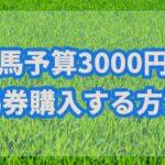 競馬予算を3000円で勝つためには馬券をどのように購入するべき??【馬券購入術】