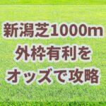 新潟芝1000m攻略法!!有利な枠とオッズで高配当を狙う