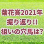 菊花賞【2021年】振り返り!激走馬は読めたが惜敗の複勝オッズとは